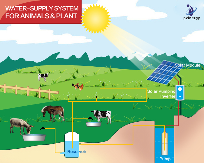 Solar System For Animals Water Supply System Macs